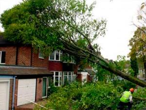 Storm Damage Guildford